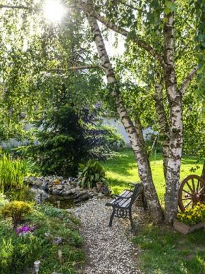 Aménagement de jardin à Courcelles