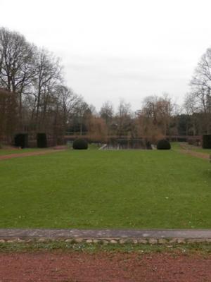 Plantation de gazon à Charleroi